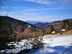 polany, góry Beskid Sądecki